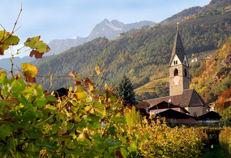 Goldener Herbst in Algund